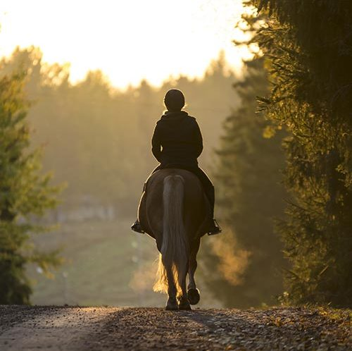 Woman riding a horse down a country lane
